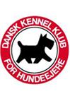 Dkk-Aalborg
